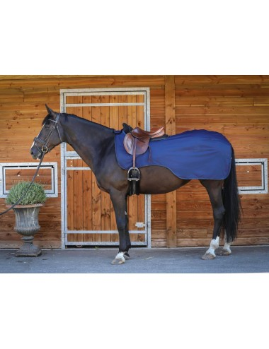 Soft Shell Exerce Rug - Navy - Navy